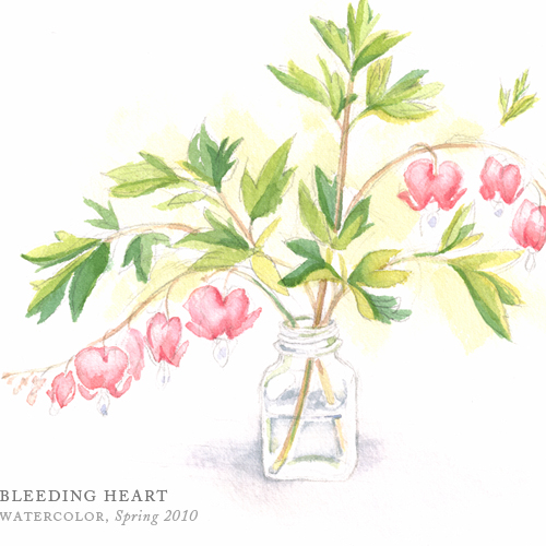 Bleeding Heart by Breezy Brookshire