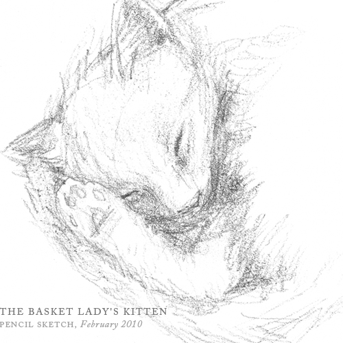 The Basket Lady's Kitten by Breezy Brookshire