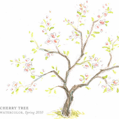Cherry Tree by Breezy Brookshire