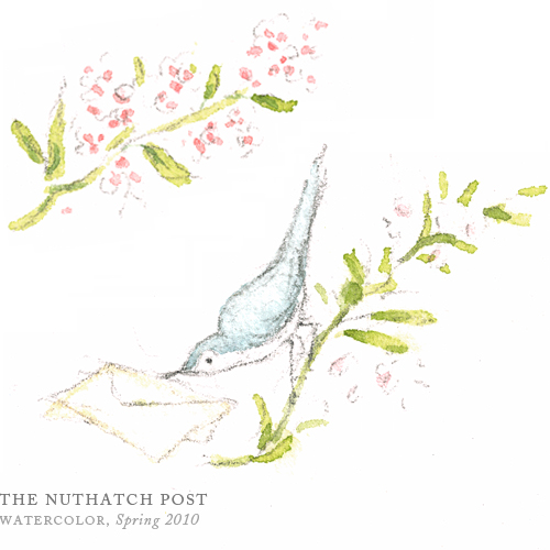 The Nuthatch Post by Breezy Brookshire