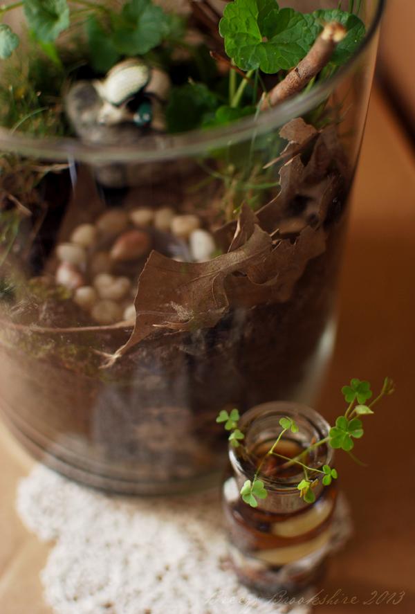 2013_terrarium_miniature_garden