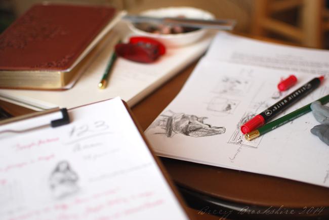 2014_2_drawing_thumbnails_01